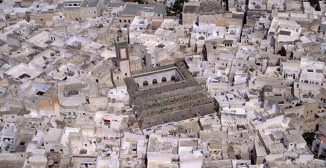 تدبير الموارد المائية بالمدينة المغربية العتيقة: نظام السكوندو بمدينة تطوان نموذجا